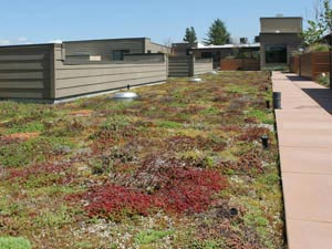 Green Roof - Portland, OR - McDonald & Wetle