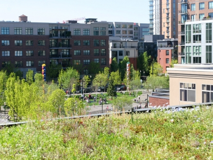 Multilevel Eco Green Roof - Portland, OR - McDonald & Wetle