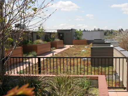 Eco Green Roof with Gate - Portland, OR - McDonald & Wetle