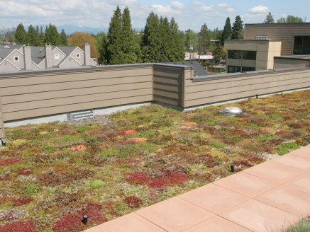 Eco Green Roof - Portland, OR - McDonald & Wetle