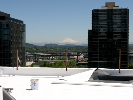 View of Single Ply Up Roof - Portland, OR - McDonald & Wetle
